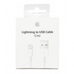 APPLE CAVO DATI LIGHTING A USB (SOSTITUISCE MD818ZM/A)