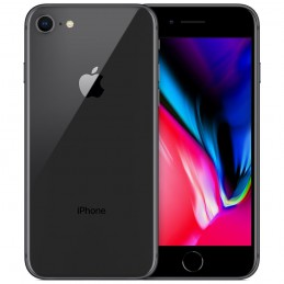 iPhone 8 64 GB S/Gray A++...